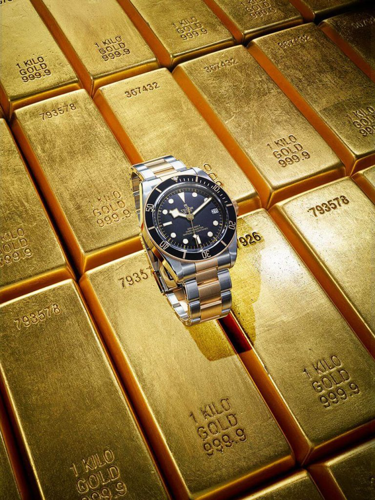 41mm Two-Tone Mechanical Dive in Stainless Steel and Yellow Gold by Tudor